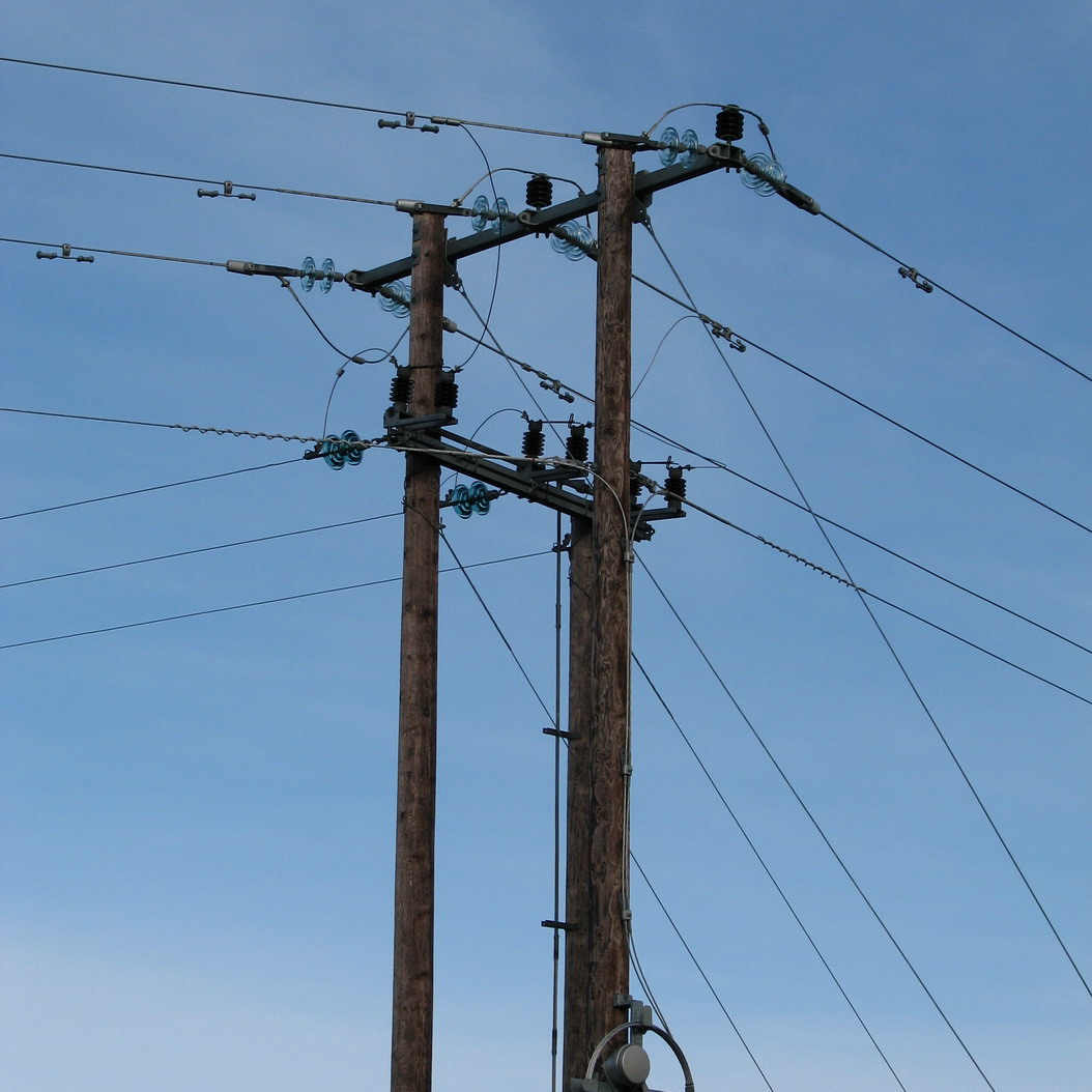 Power line and wildlife meeting 22 Nov