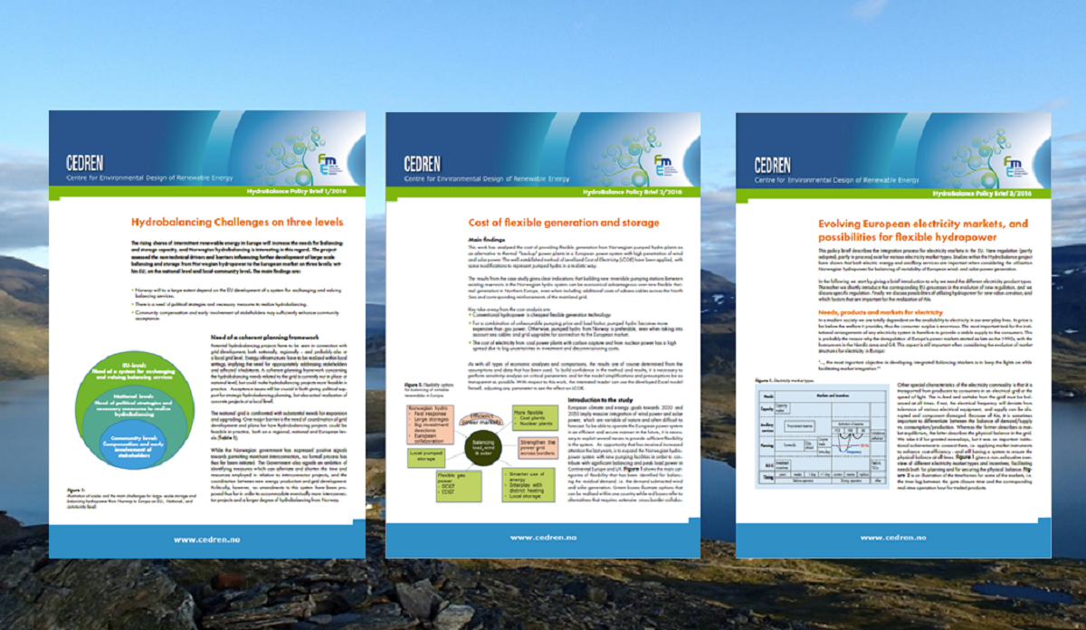 CEDREN has issued three policy briefs that synthesize findings of the HydroBalance research project highlighting the relevance of the research on hydrobalancing to policy and offering recommendations for change.